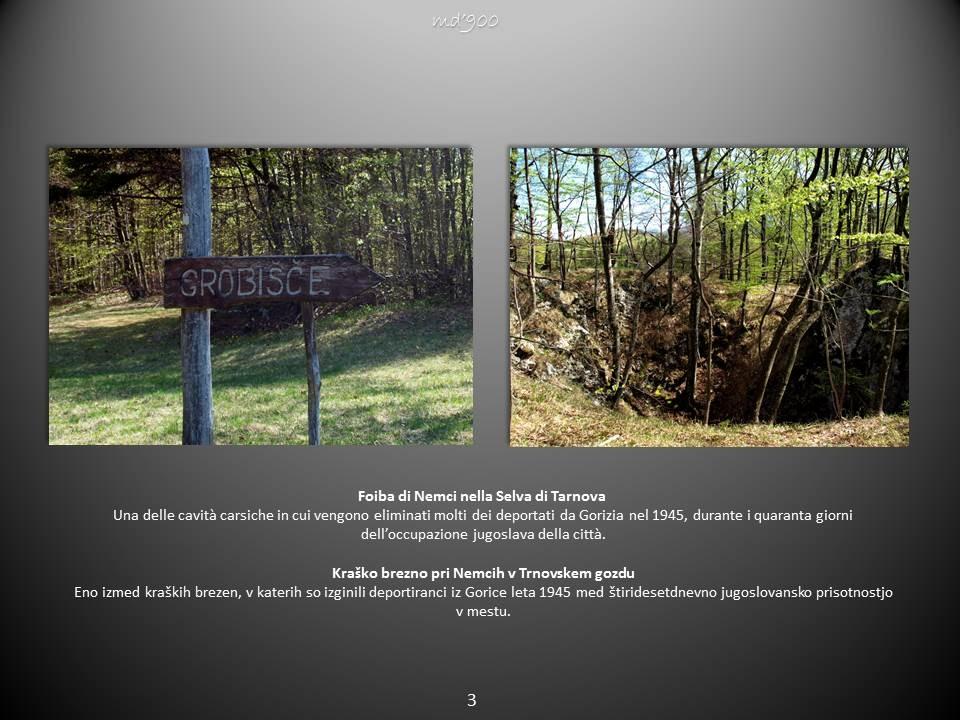 Foiba di Nemci nella Selva di Tarnova - Kraško brezno pri Nemcih v Trnovskem gozdu